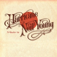 Hurricane : Groupe Folk Rock Country Tribute band Normandie - Calvados (14)