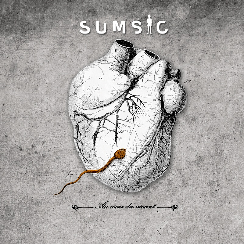 Sumsic : Album 1 | Info-Groupe