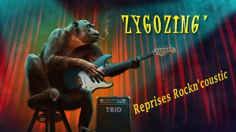 Zygozing' : Freed From Desire - GALA | Info-Groupe
